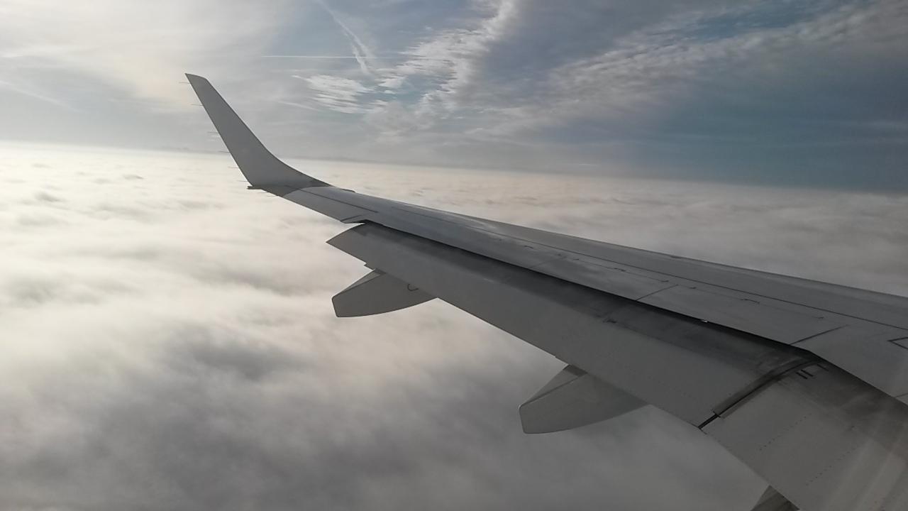 Was mache ich, wenn mein Flug annuliert wurde?