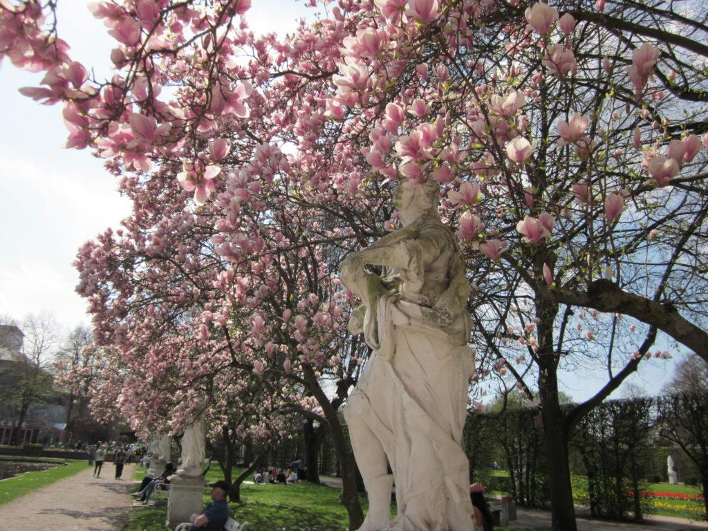 trier magnolien ausflug städtereise städtetrip jean above the clouds